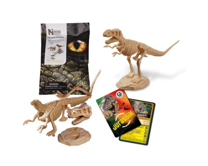 Natural History Museum Collectable Dinosaurs - 24 Pack